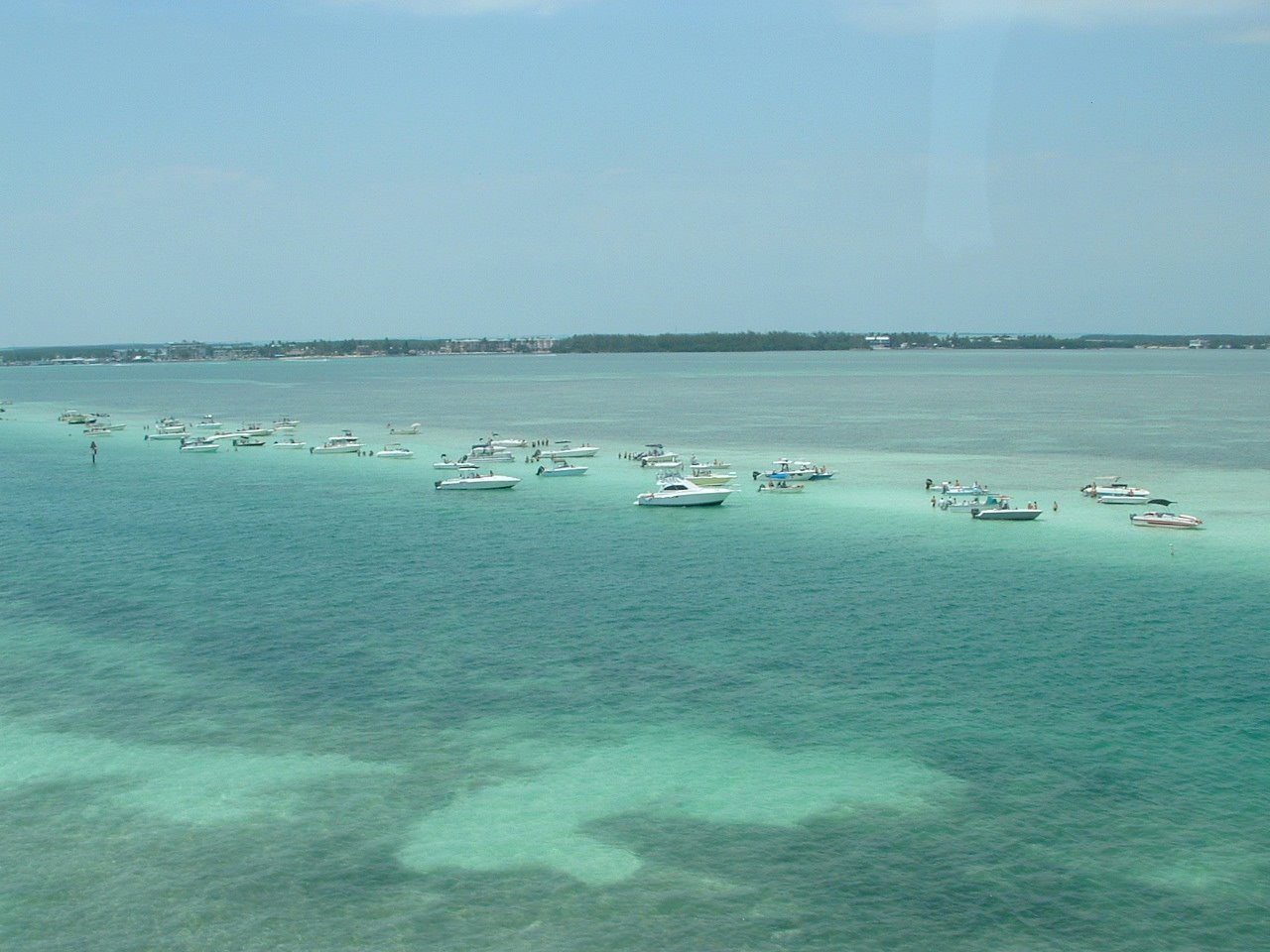 Alligator reef estates for Islamorada florida fishing
